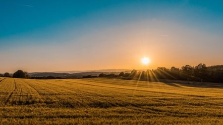 Photo of a field in the sun. Authored by Federico Respini, used under the UnSplash License.